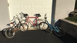 Three Bikes: Girls MT220 Trex - Boys Schwin Spitfire - Adult Schwin Paramount Racer (Buy together or separately)